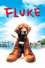 Fluke (1995) Poster