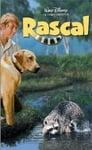 2-Rascal
