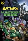 Imagem Batman vs. As Tartarugas Ninjas