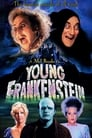 2-Young Frankenstein