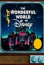 The Wonderful World of Disney poster