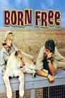 4-Born Free