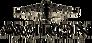 Aviron Pictures logo