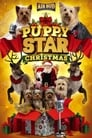 Image Puppy Star Christmas