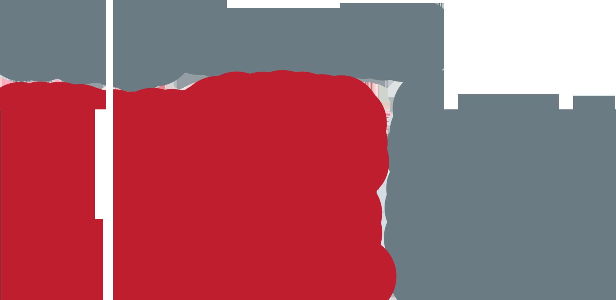 Digital Riot Media