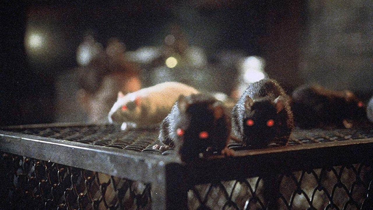 Imagens do Ratos Dublado Dublado  Online