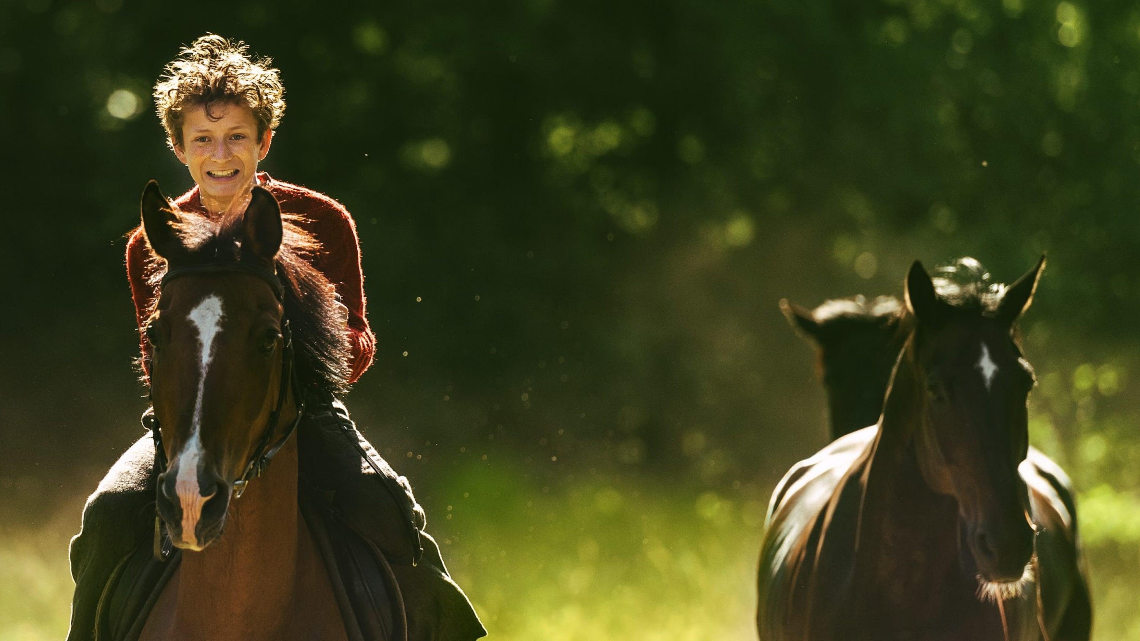 Bakgrund för Ut och stjäla hästar