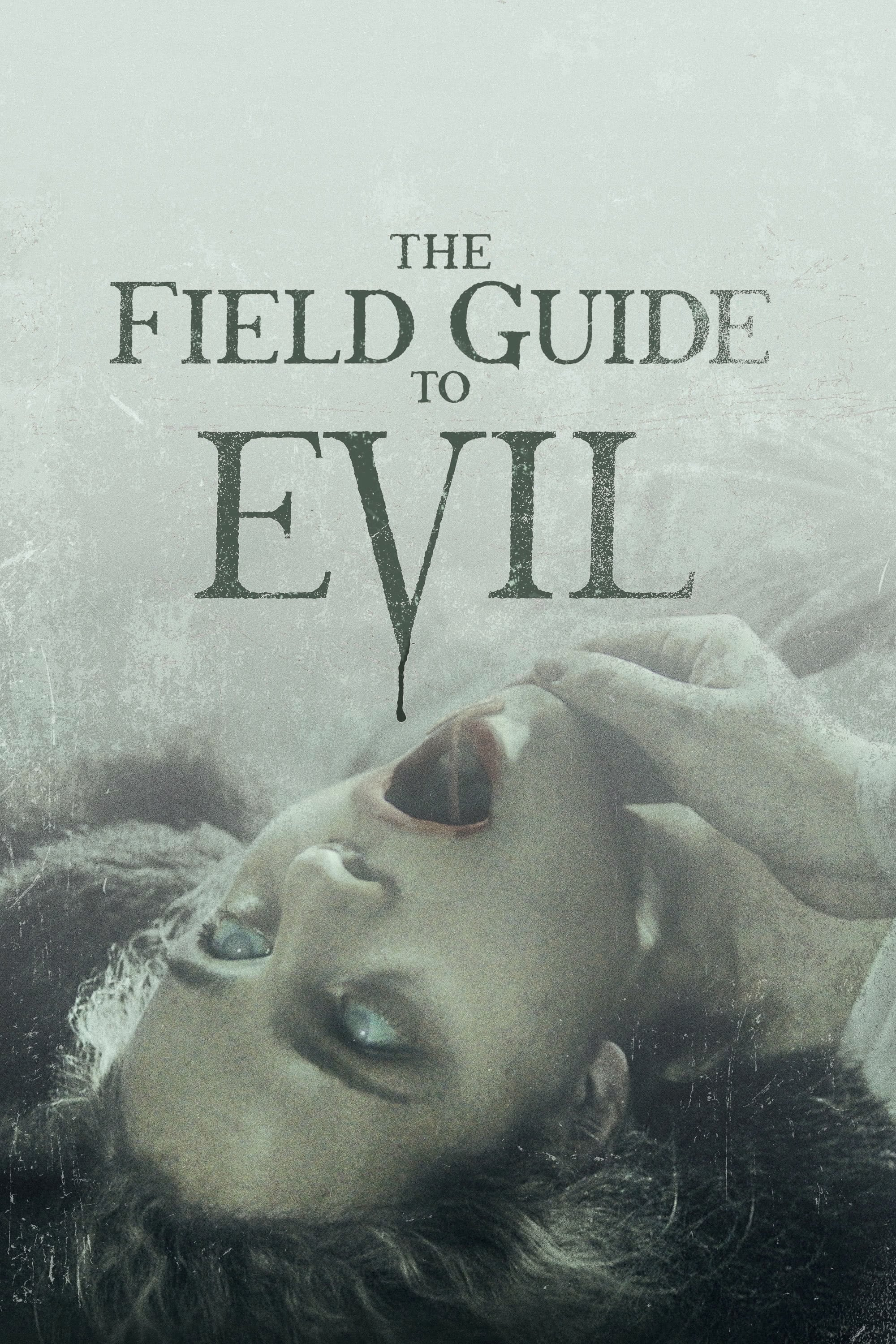 The Field Guide  ...