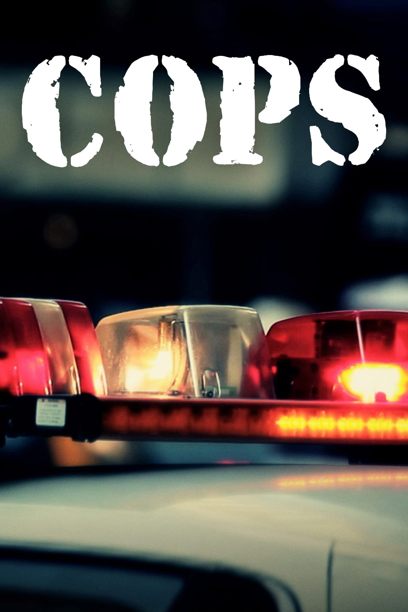 COPS saison 21 episode 24 en streaming
