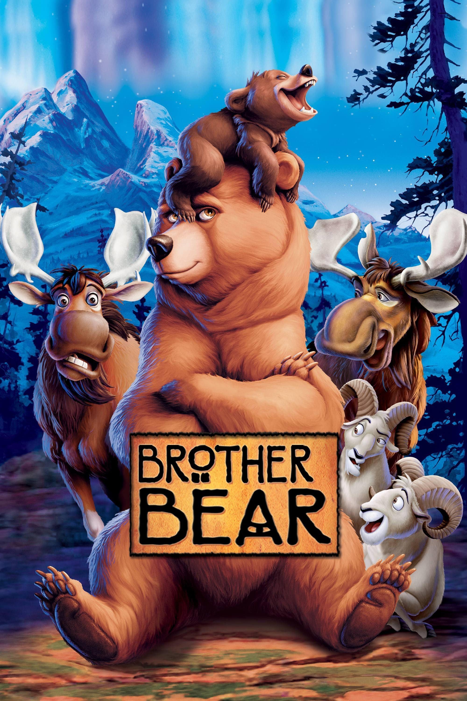 Medvedí bratia