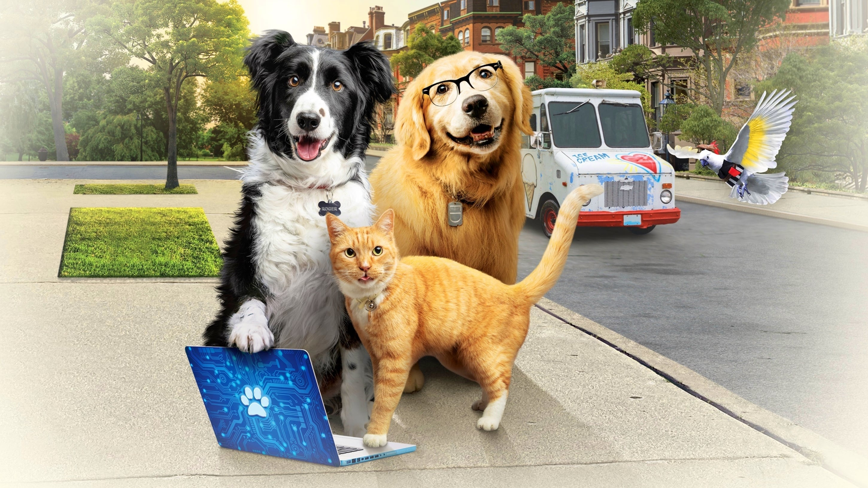Cats and Dogs 3 Paws Unite  [2020]