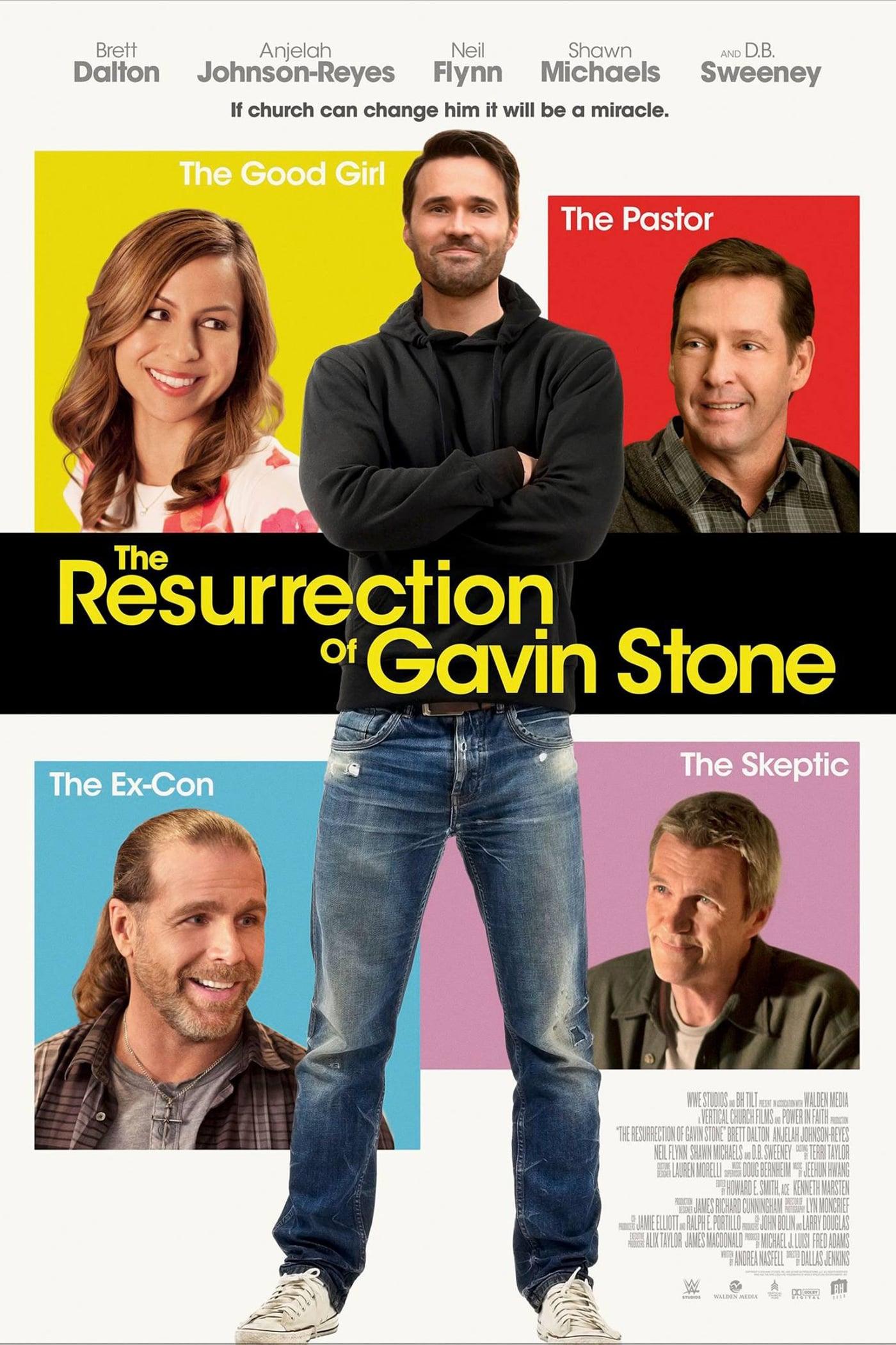 Assistir A Ressurreição de Gavin Stone Dublado Online Dublado 1080p