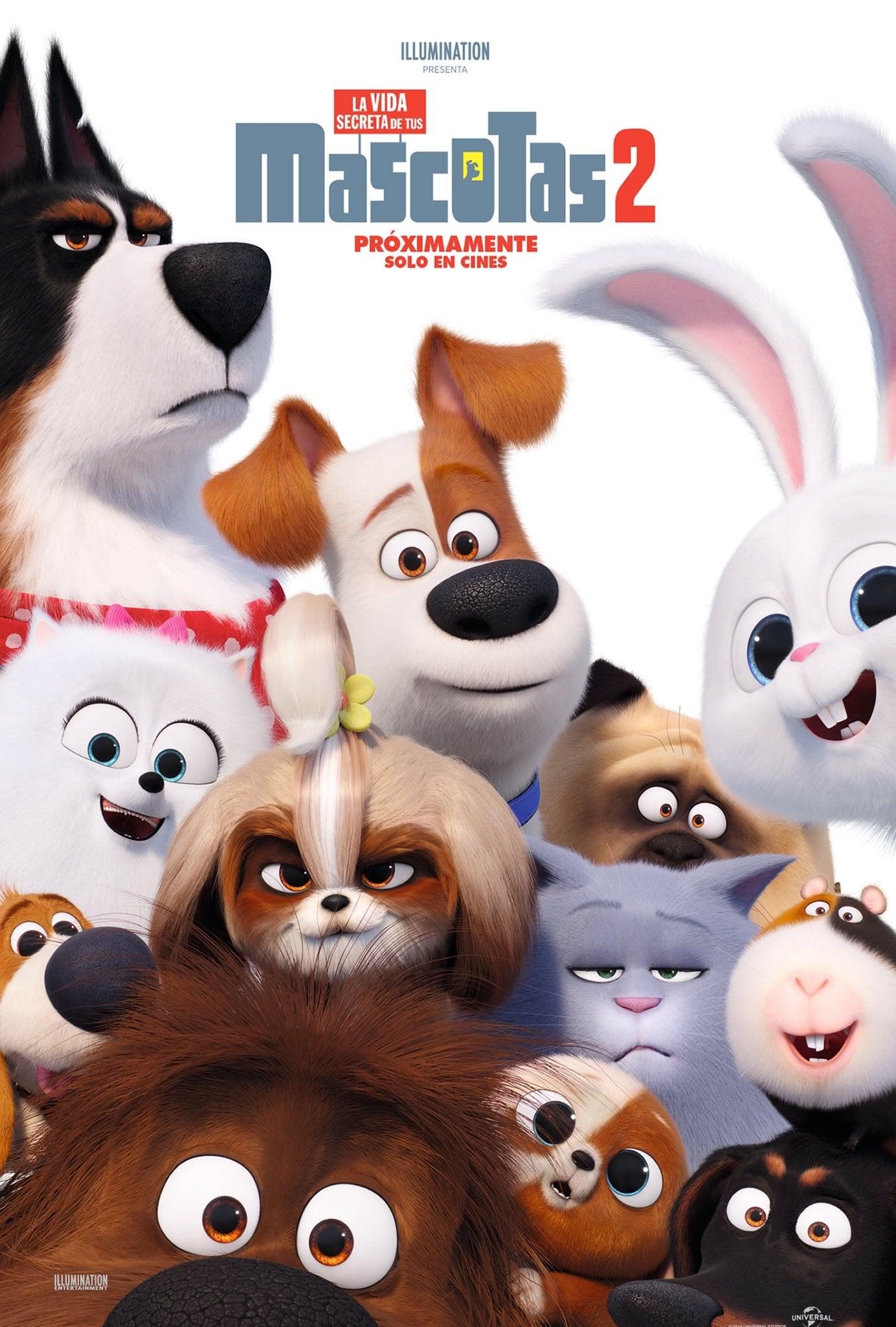 Pelicula La Vida Secreta de Tus Mascotas 2 (2019) HD 1080P LATINO/INGLES Online imagen