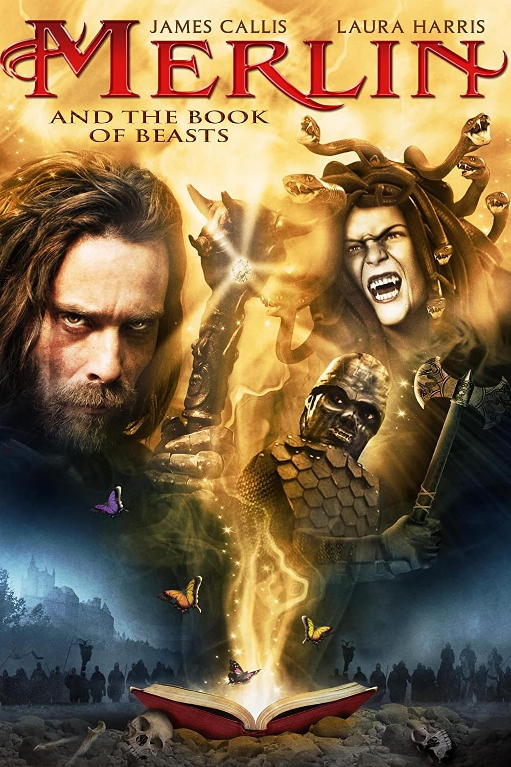 Merlin and the Book of Beasts (2009)
