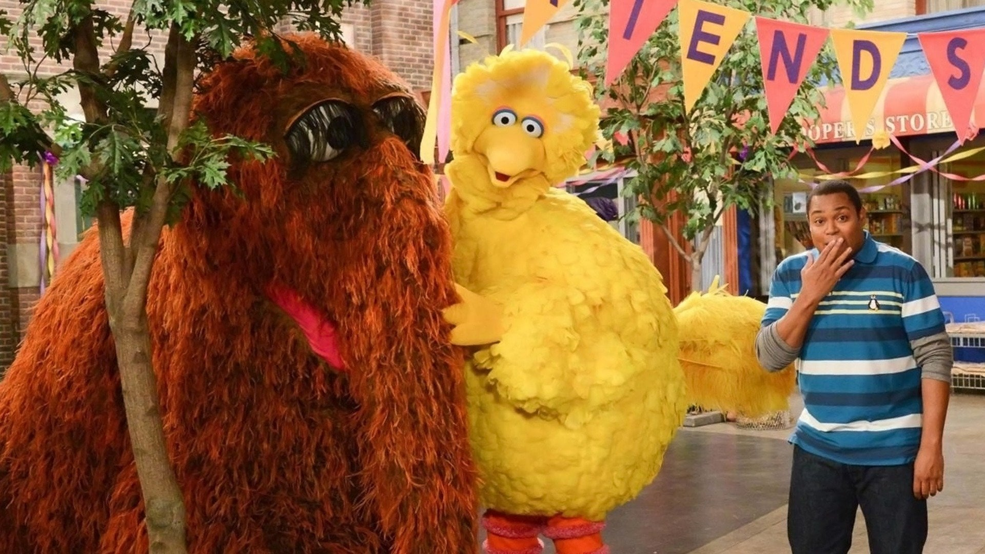 Sesame Street Season 45 :Episode 18  Friendship Day