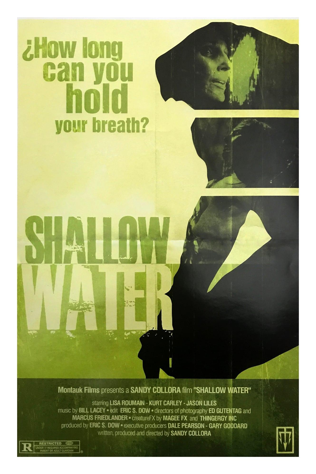 Ver Shallow Water Online HD Español (2016)
