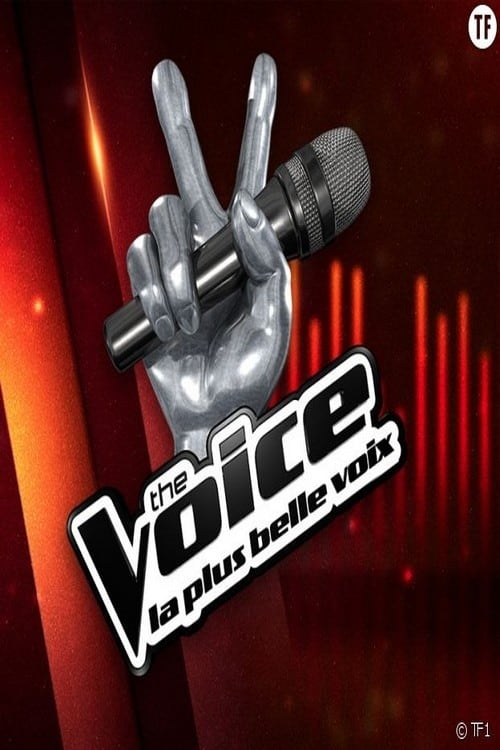 The Voice (2017)