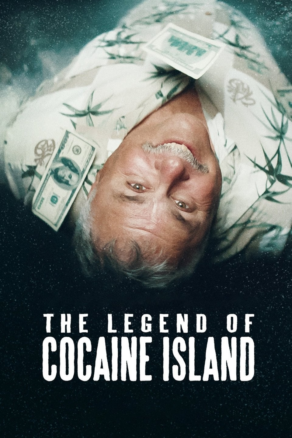 Póster The Legend of Cocaine Island