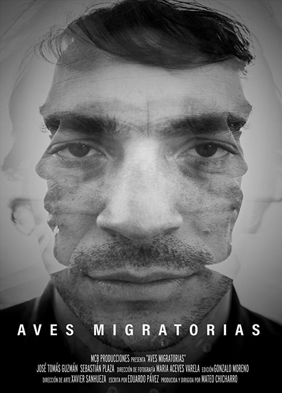 Ver Migratory Birds Online HD Español ()
