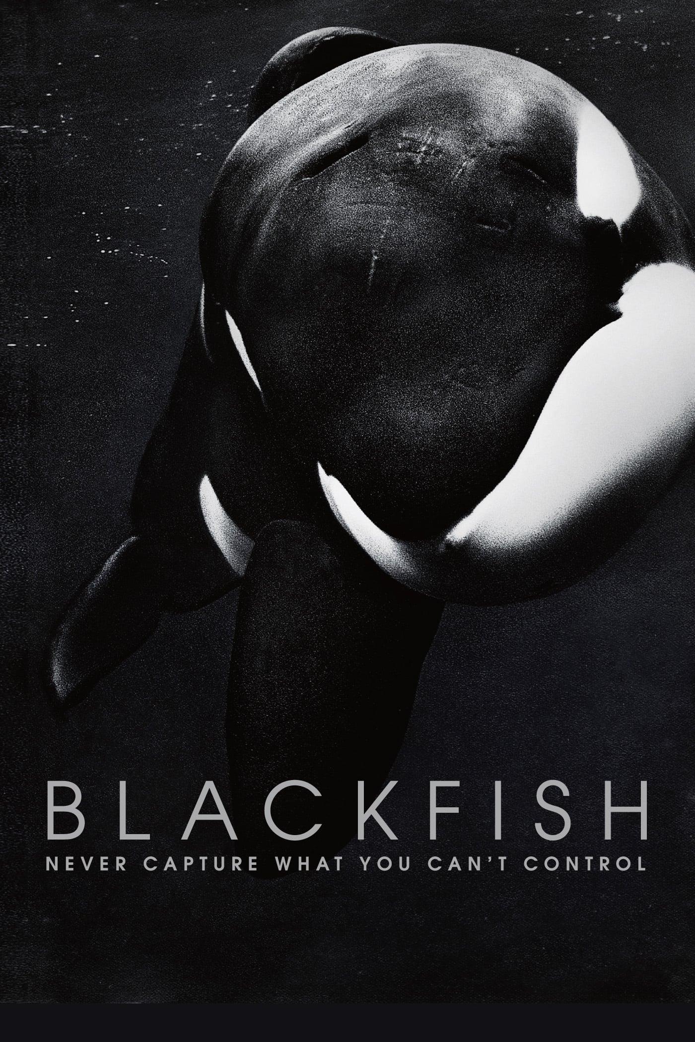 Watch Blackfish Online