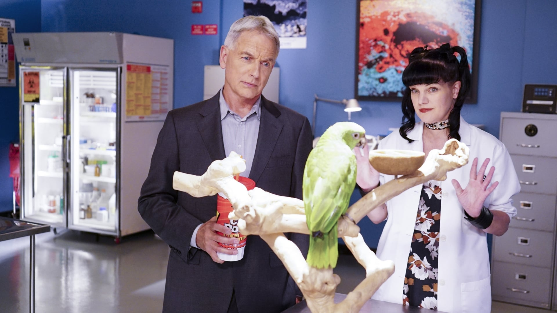 NCIS Season 14 :Episode 3  Privileged Information