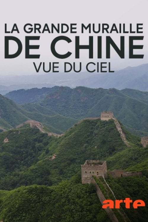Ver One man's mission to walk the Great Wall of China with a drone Online HD Español ()