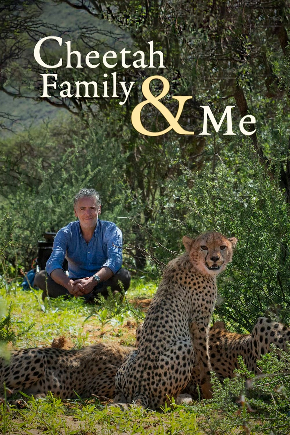 Cheetah Family & Me TV Shows About Africa