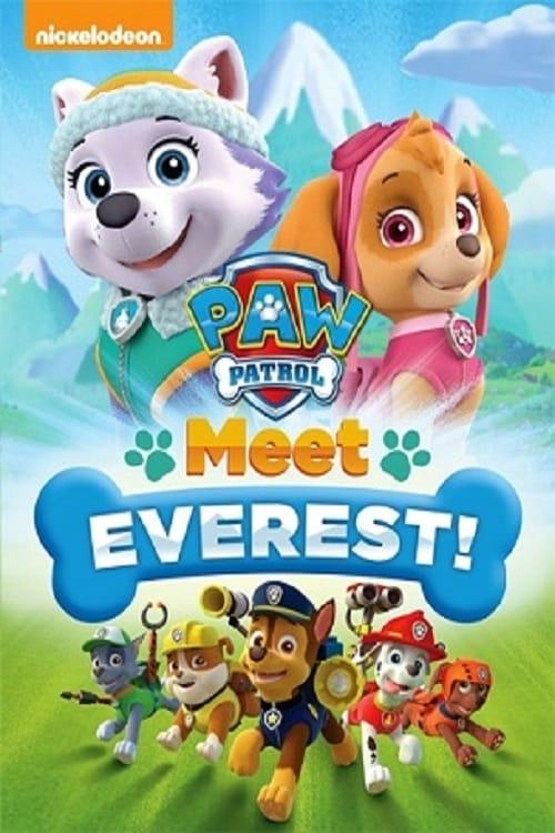 Póster La patrulla canina: Conoce a Everest