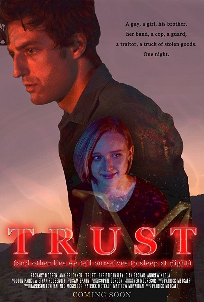 Trust (And Other Lies We Tell Ourselves to Sleep at Night) (2017)