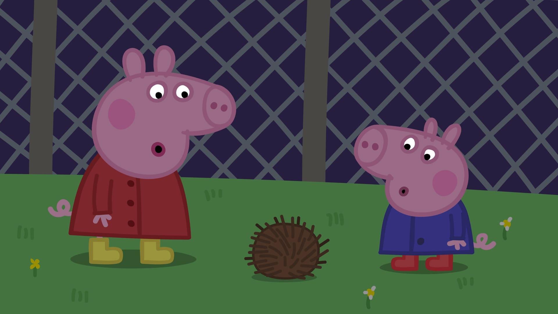 Peppa Pig Season 4 :Episode 35  Night Animals