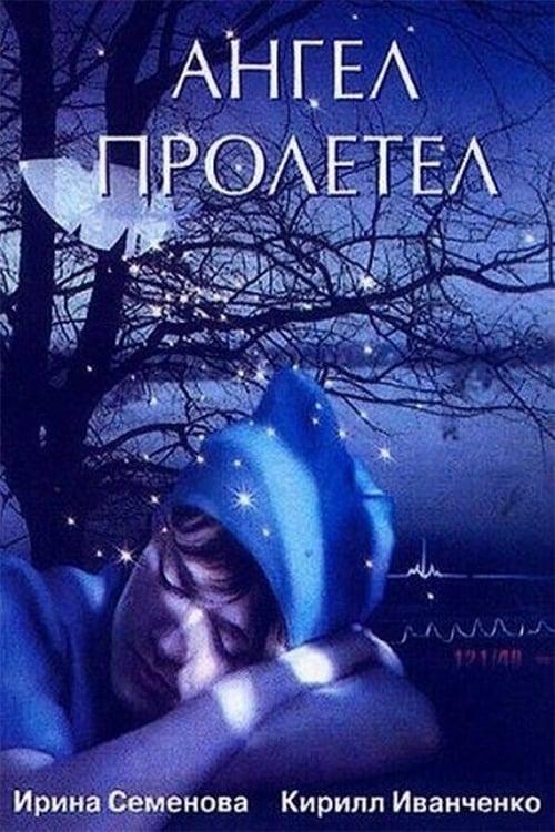 Angel flew (2004)