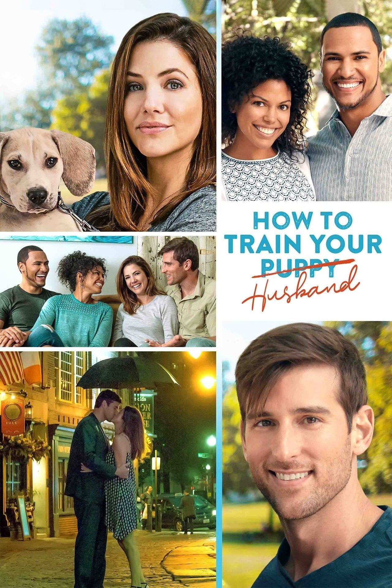 How to Train Your Husband or (How to Pick Your Second Husband First) on FREECABLE TV
