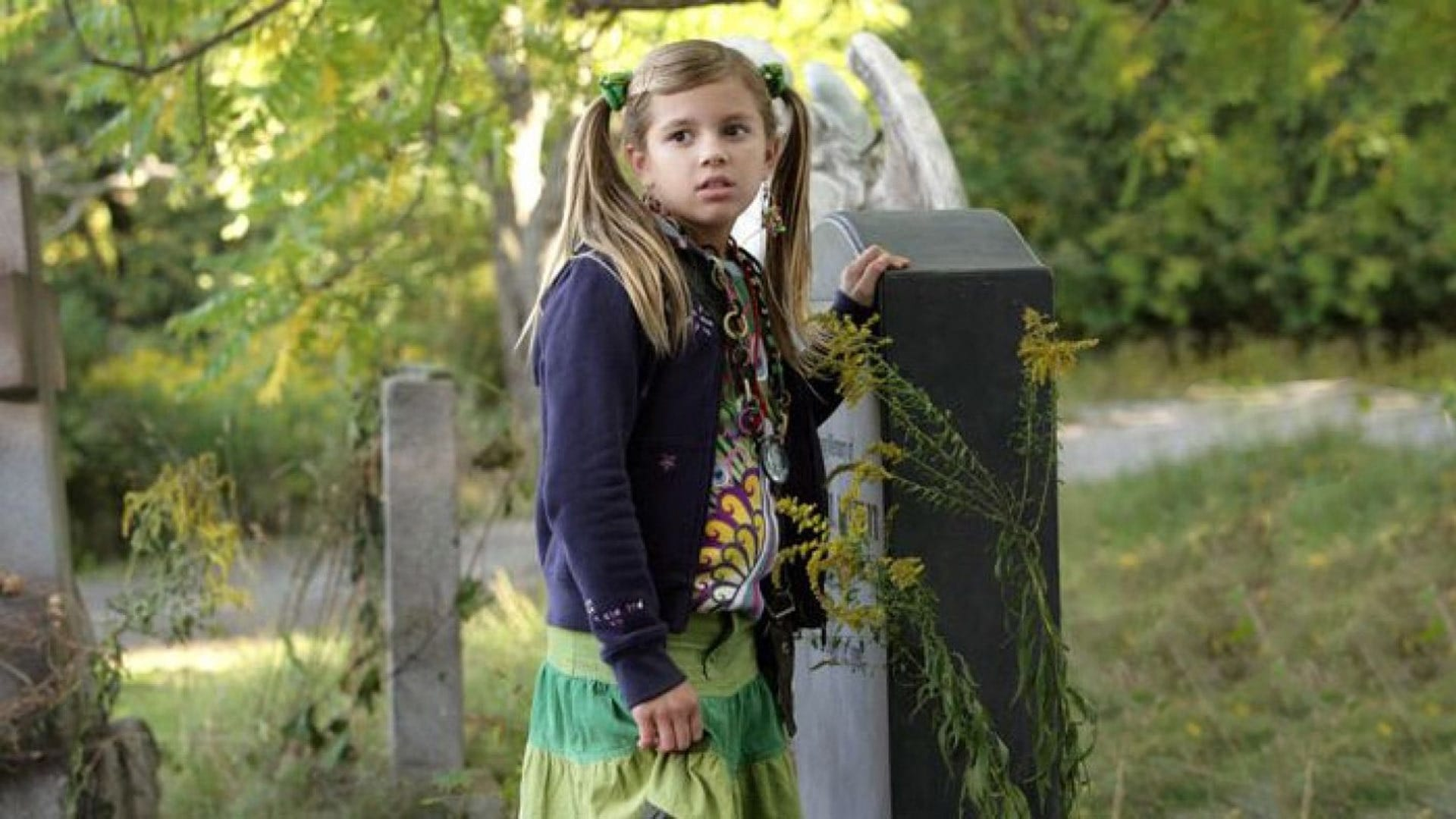 Roxy Hunter and the Secret of the Shaman (2008)
