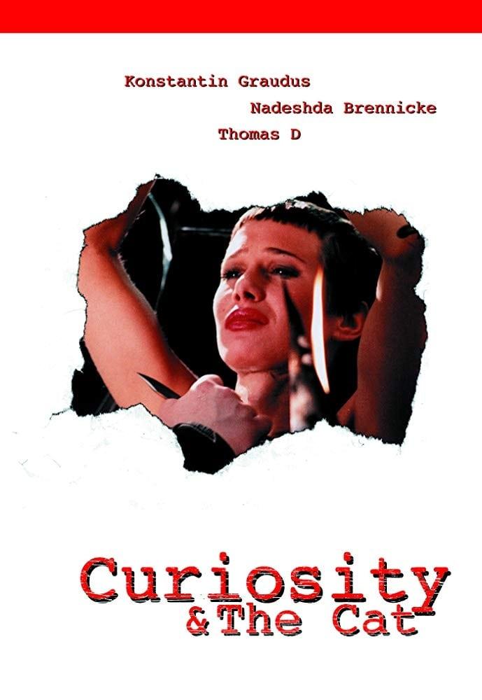 Curiosity & the Cat