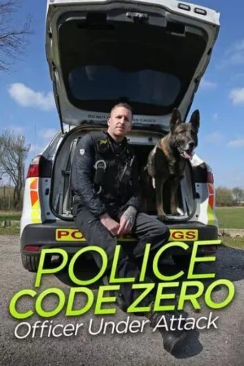 Police Code Zero: Officer Under Attack (2019)