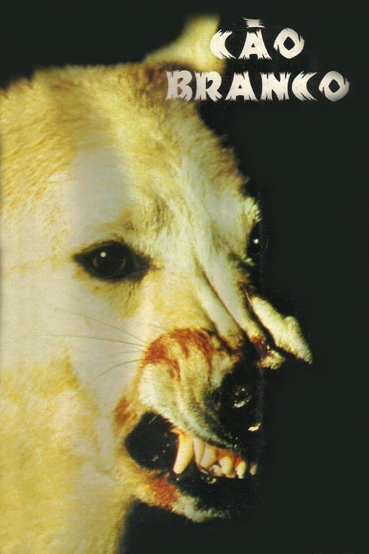 Imagem O Cão Branco