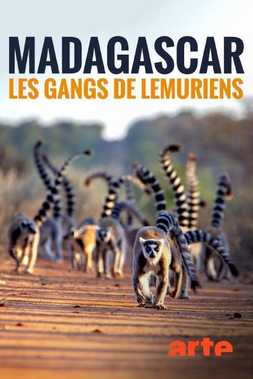 Gangs of Lemur Island (2019)