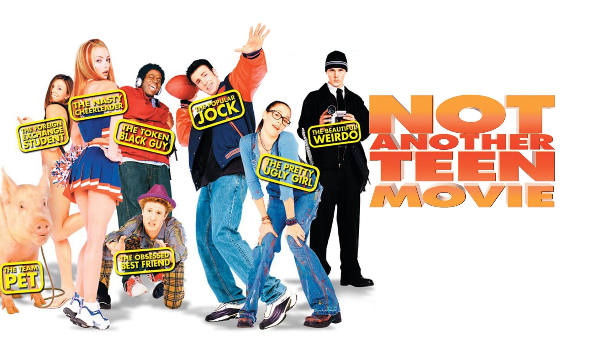 Not Another Teen Movie Movie