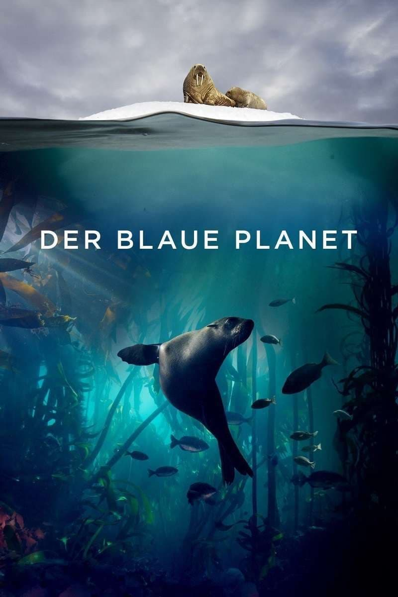 Der blaue Planet TV Shows About Earth