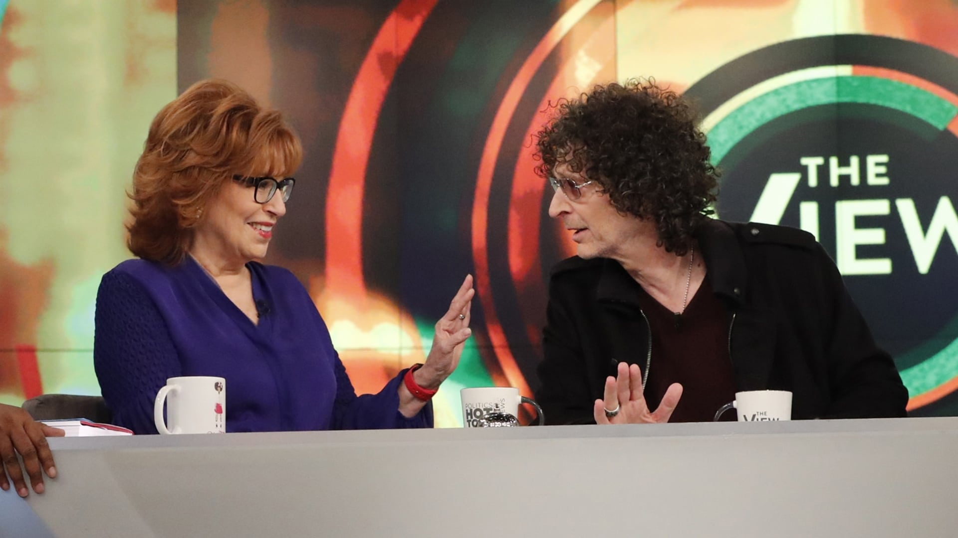 The View Season 22 :Episode 161  Howard Stern