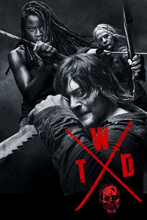 The Walking Dead 10ª Temporada poster, capa, cartaz