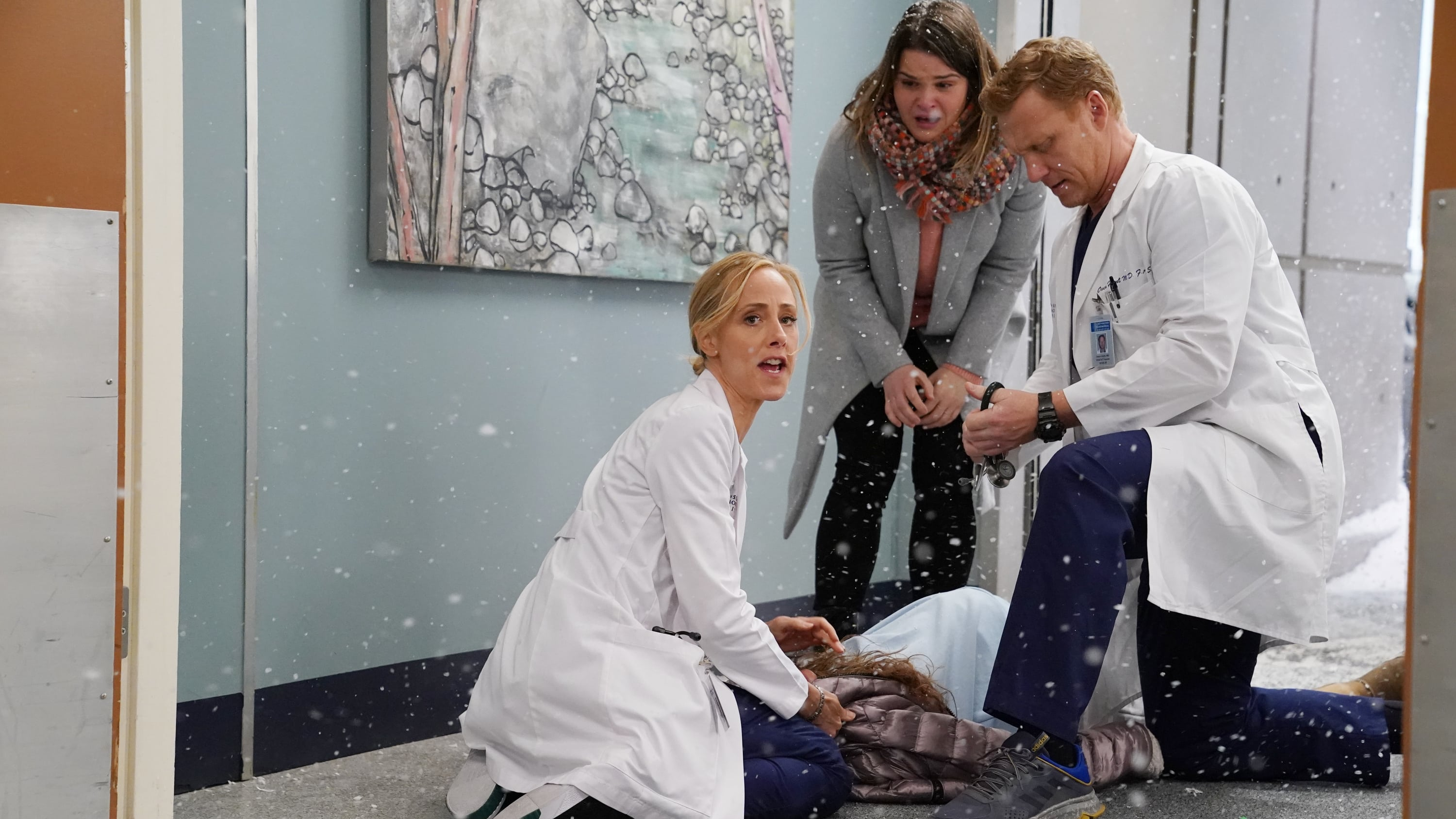 Grey's Anatomy Season 16 :Episode 15  Snowblind