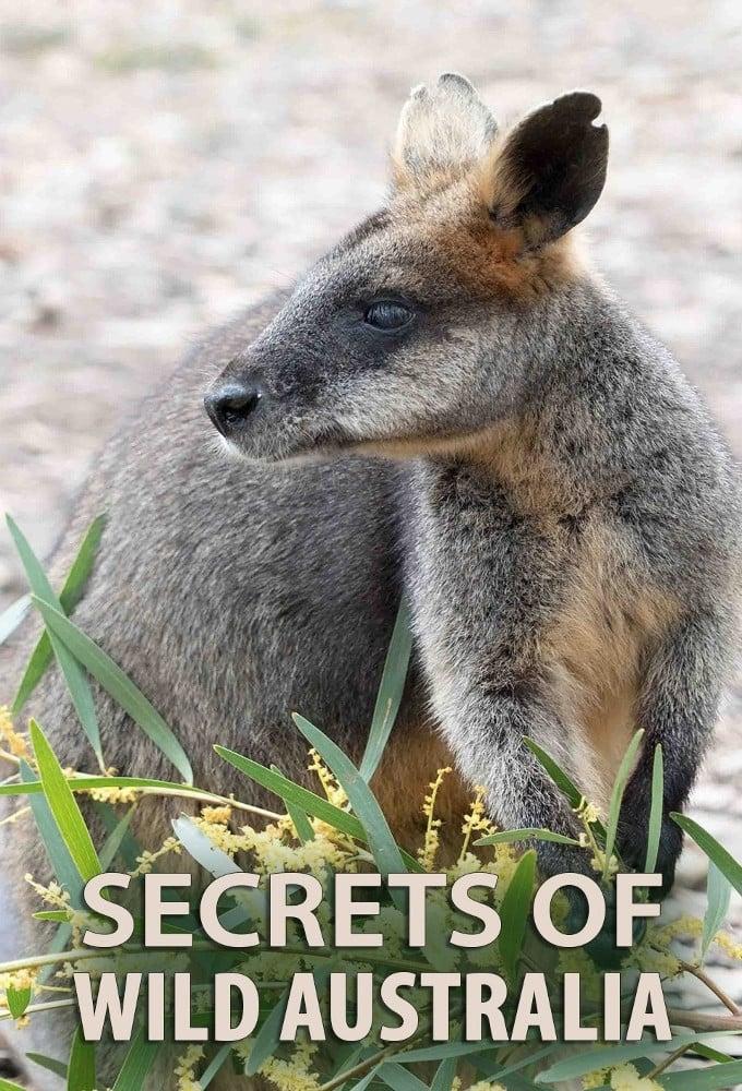 Secrets of Wild Australia TV Shows About Wildlife