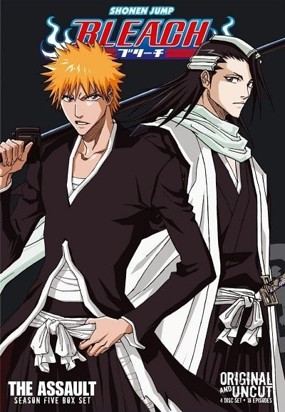 Bleach Season 5