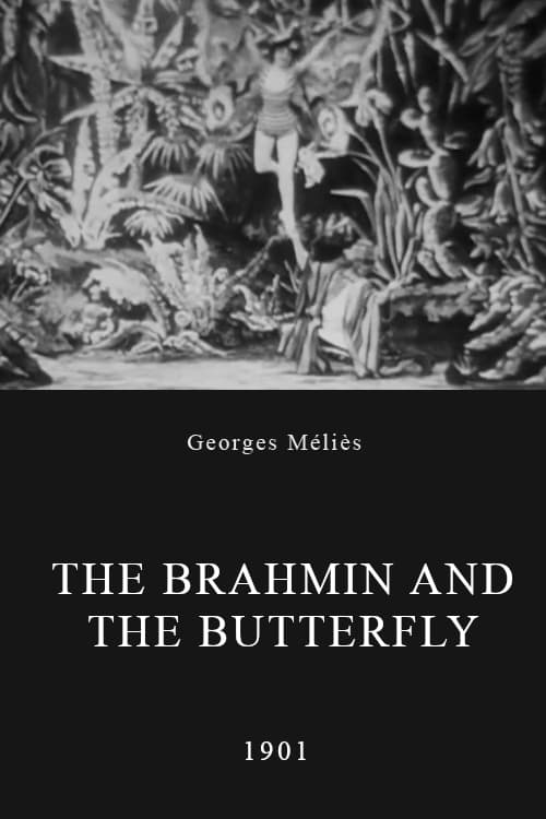 The Brahmin and the Butterfly (1901)