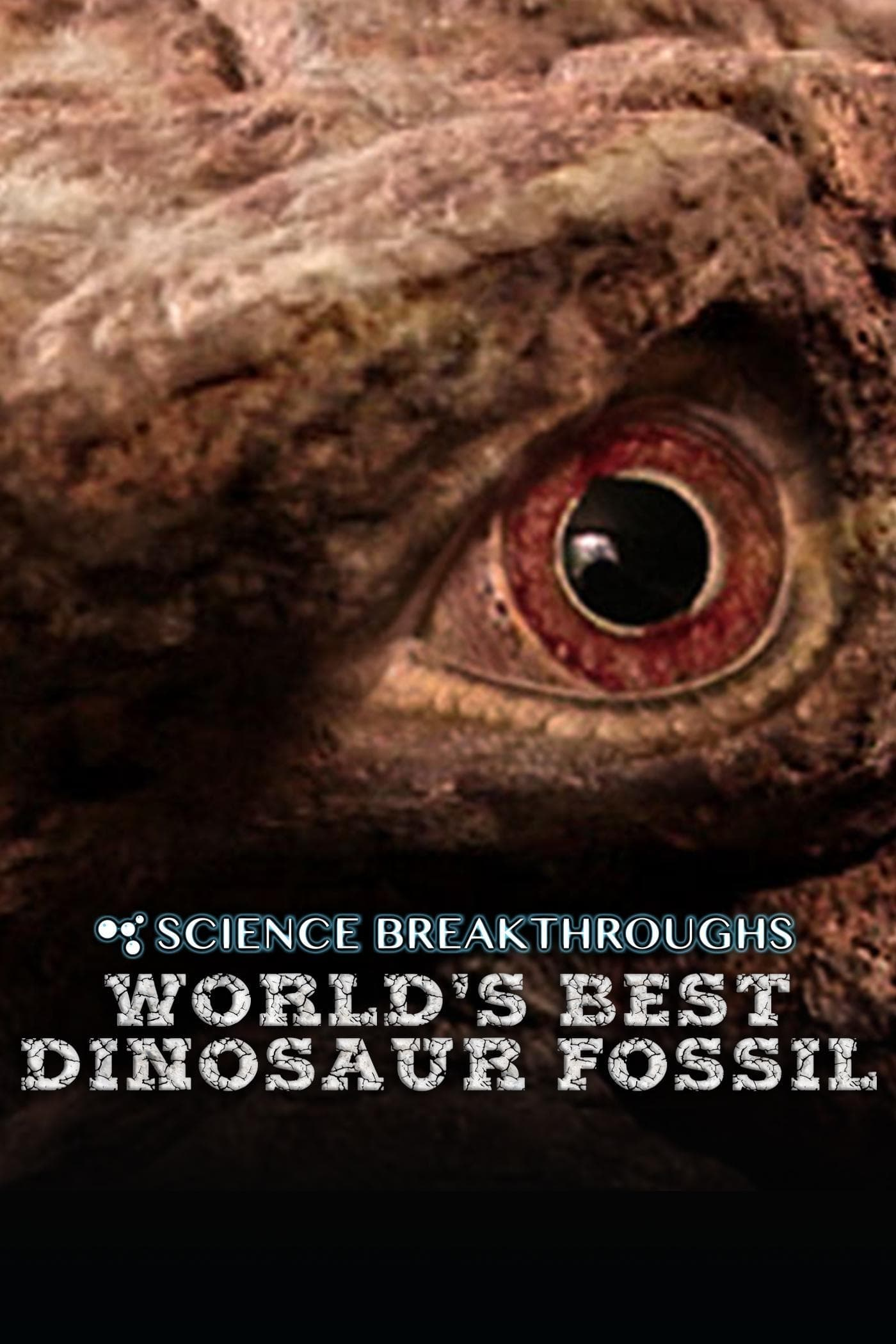 Ver World's Best Dinosaur Fossil Online HD Español ()