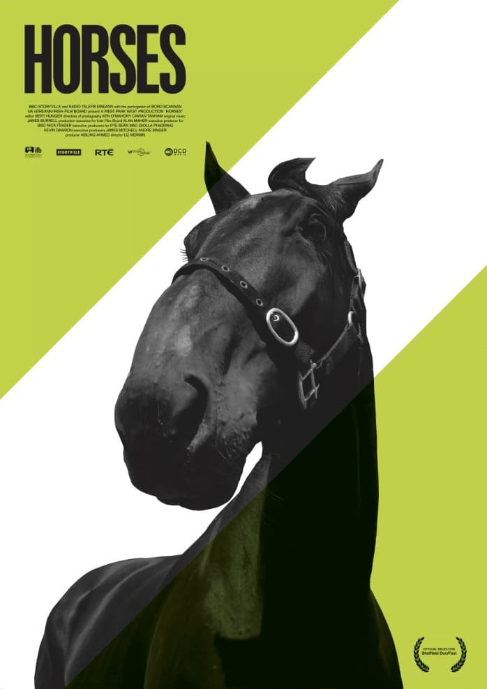 Ver Horses Online HD Español (2010)