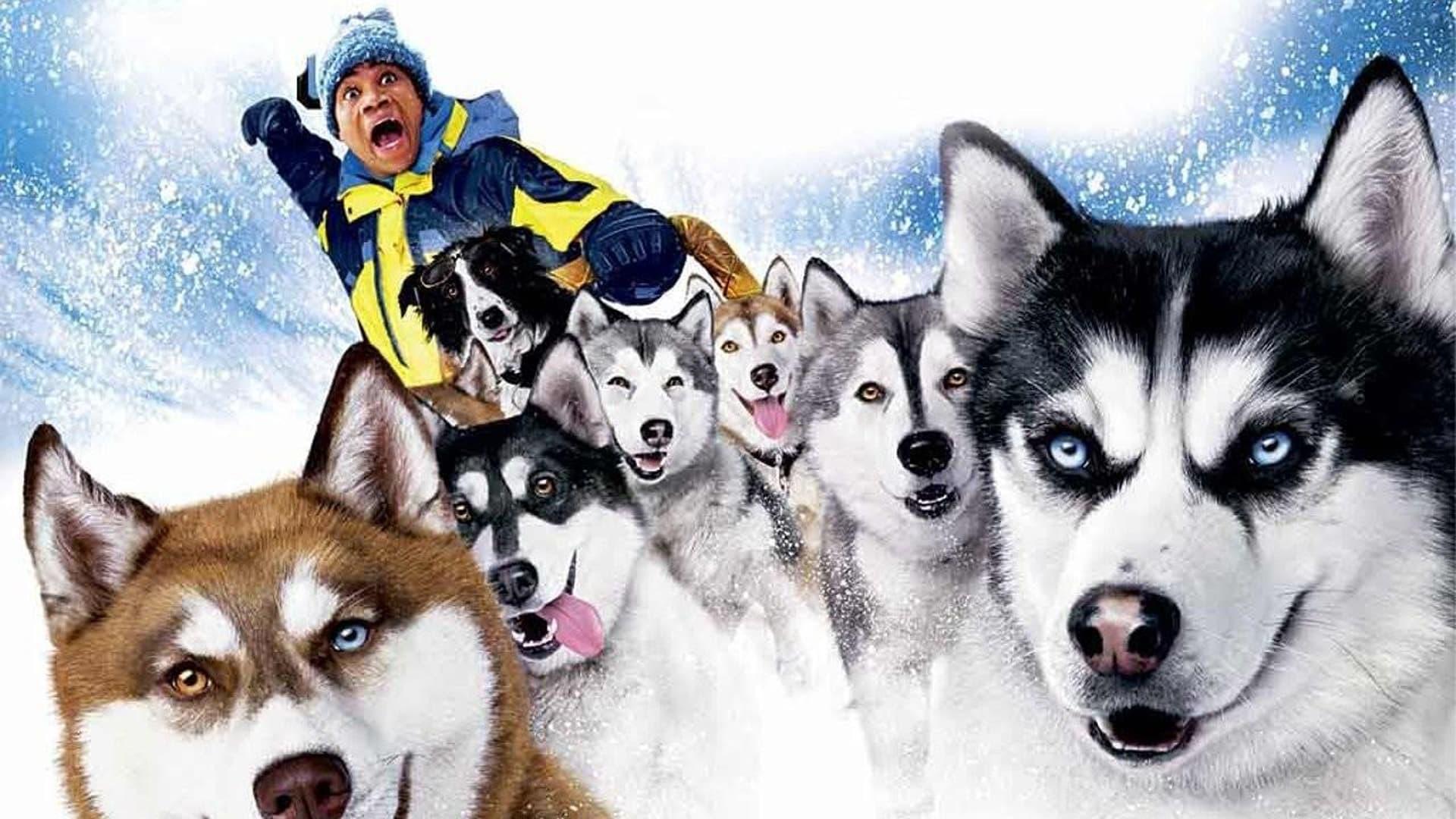Снежни кучета