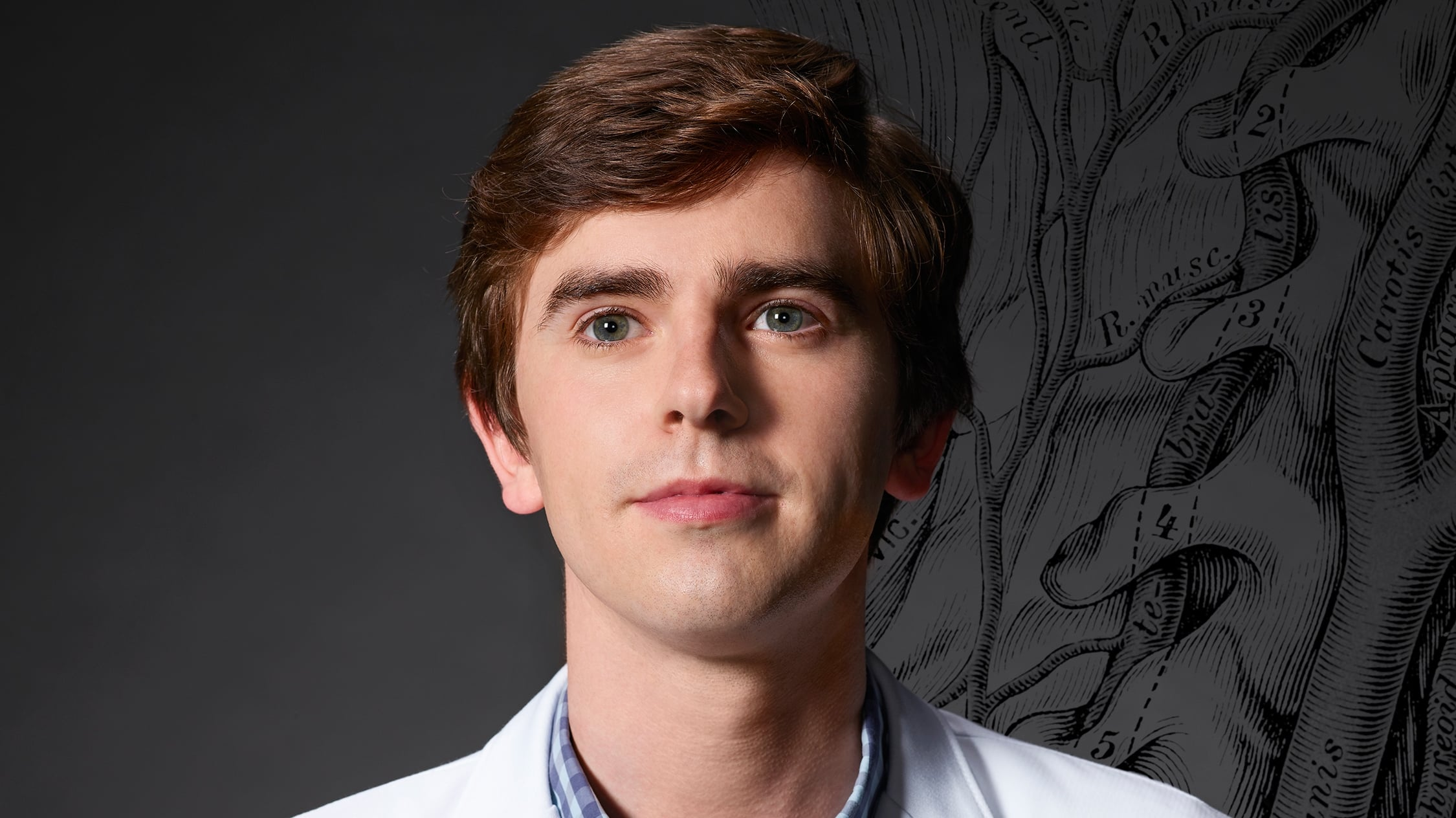 The Good Doctor - Season 2