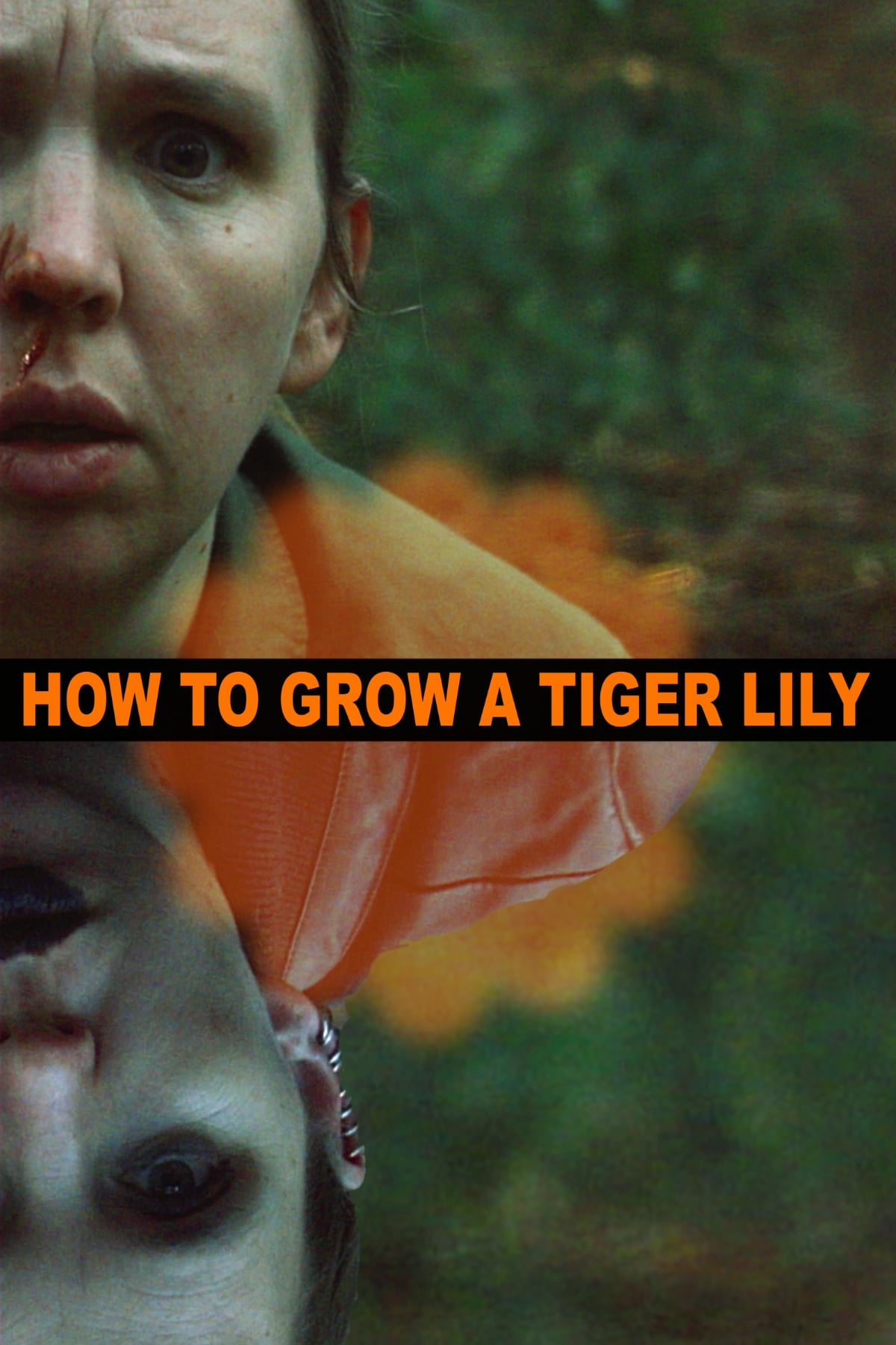 How to Grow a Tiger Lily on FREECABLE TV